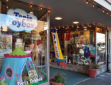 Teri's Toybox