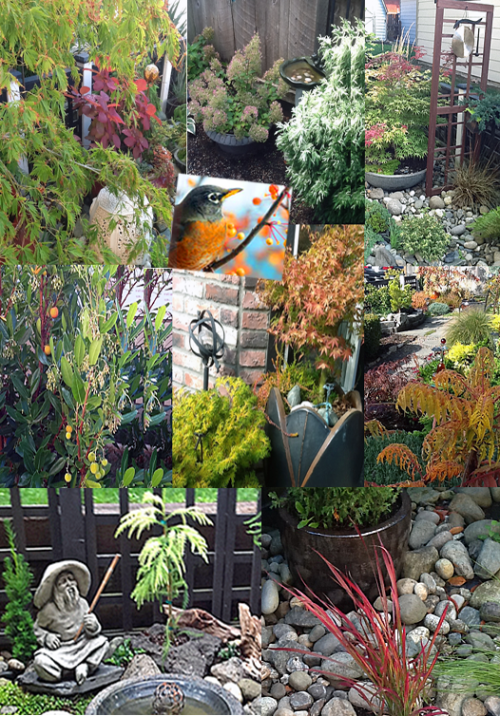 garden-collage-three