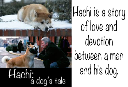 hachi-dogs-tale-1